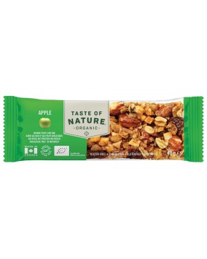 Taste of Nature Apple Organic 40g x 16